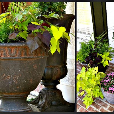 How to Change the Color of Your Flower Pots