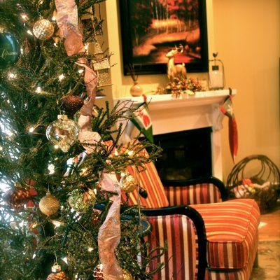 Christmas Tree at Lake Martin