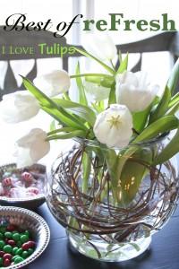 tulip1mag_edited-2