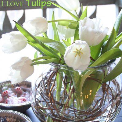 Tulips again,