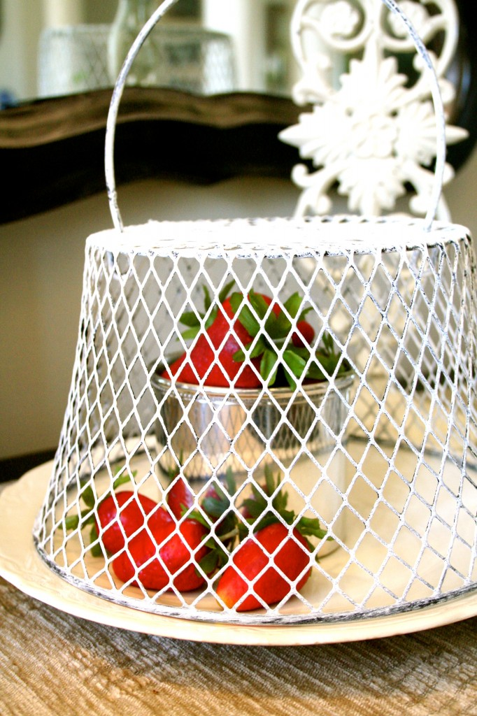 Chicken Wire Cloche painted with Annie Sloan Chalk Paint