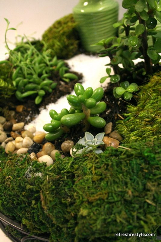 Great idea for a super cute mini garden