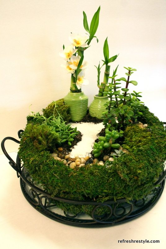 Create a mini garden, all the directions included!