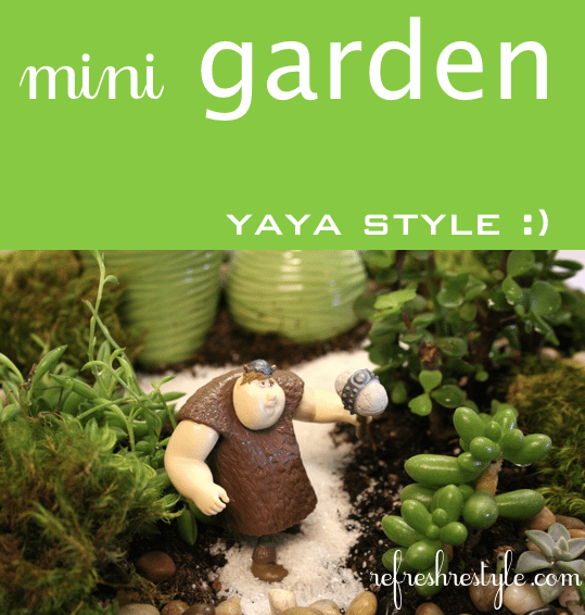 Mini garden with enchanting ideas!