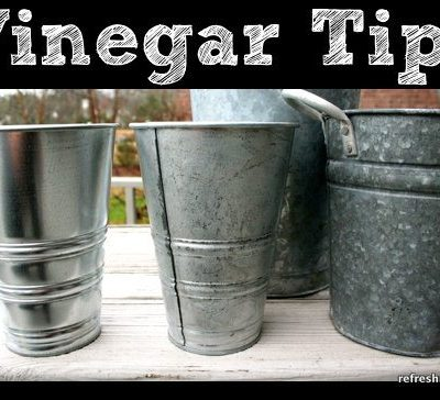 Tips {Vinegar}