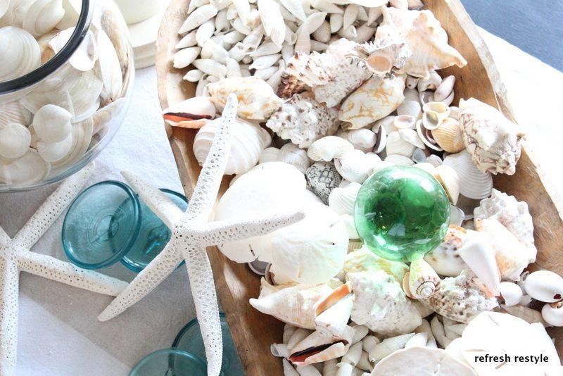 Pottery Barn Rug and Sea Shells