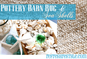 Pottery Barn Rug and Sea Shells
