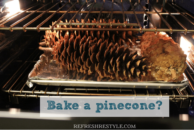 how to clean pine cones without baking