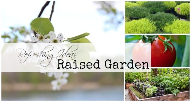 Raised Garden Ideas