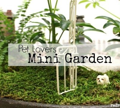Mini Garden {Pet Lovers}