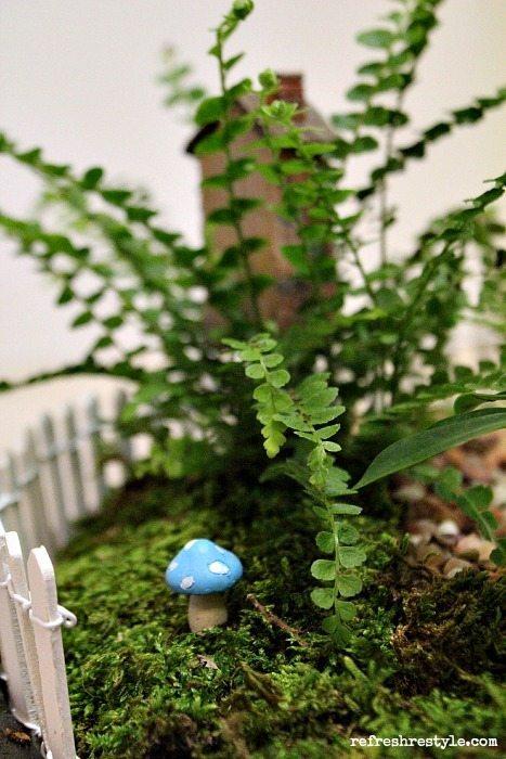 Mini Garden Mushroom