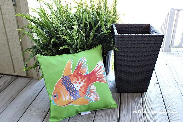 Spring Cleaning Pillows and Plants