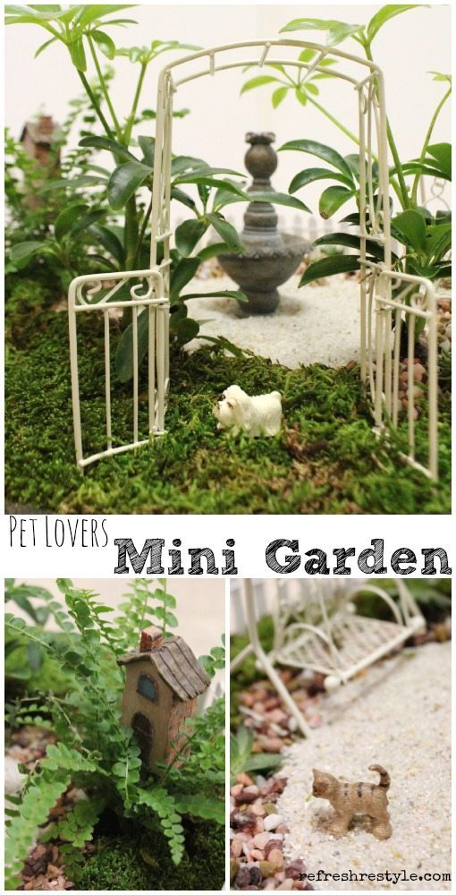 Miniature garden with pets included!