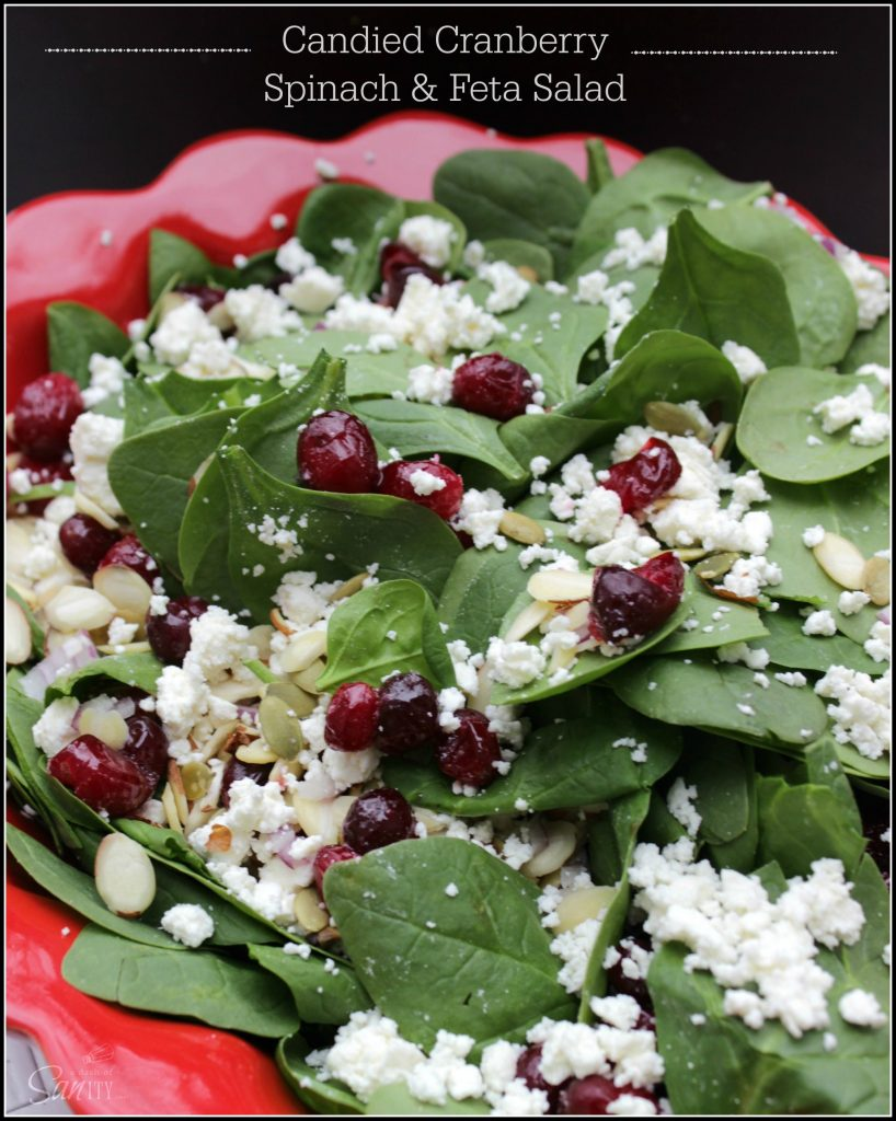 10 - A Dash of Sanity - Candied Cranberry Spinach Salad