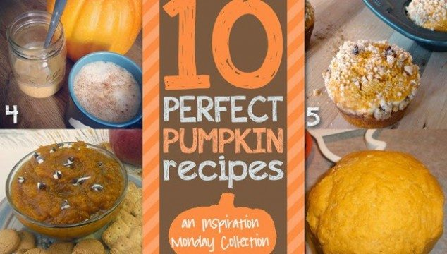 Pumpkin Recipes #recipes #pumpkins #fall