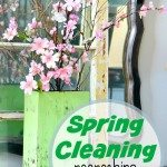 Spring Cleaning All Natural with Steam