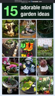 DIY ideas for an enchanting mini garden.