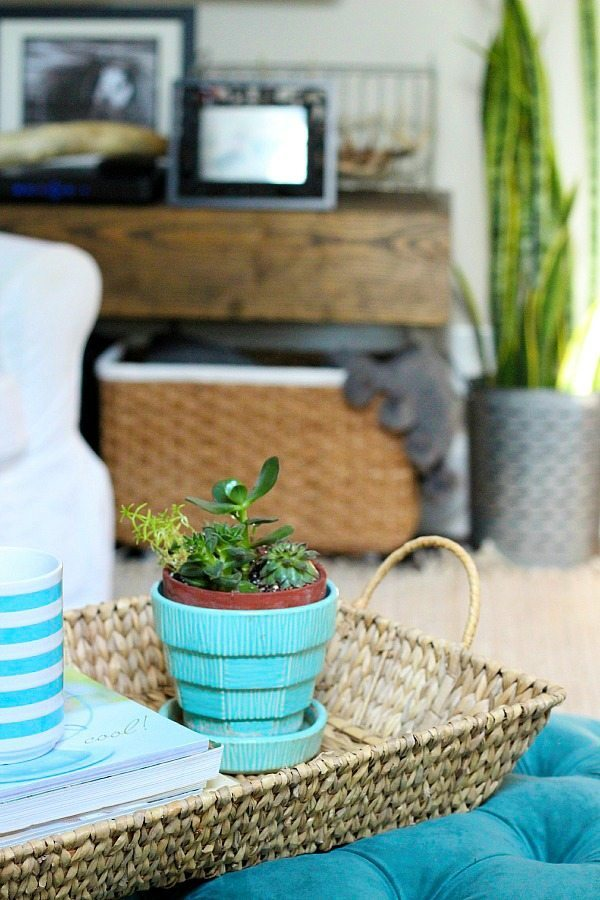 Tray Baskets-for-storage-in-decor