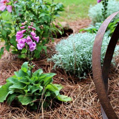Yard and Garden DIY Ideas