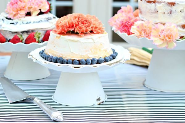 Blue Berries and Carnations Decor Steals Decor Ingenuity