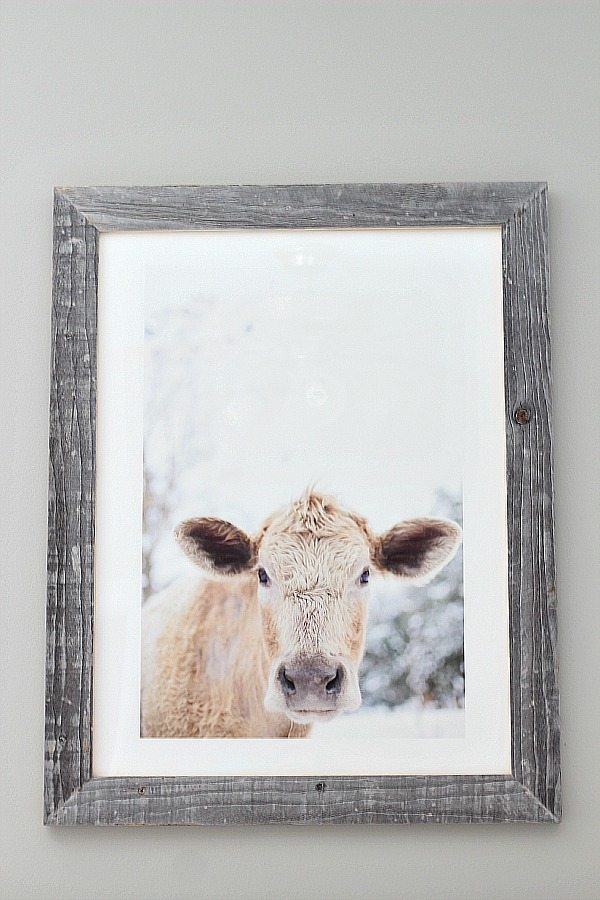 Minted Art Print Moo Cow in guest room at refreshrestyle.com