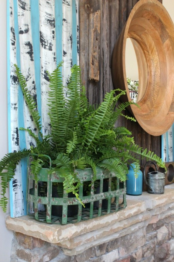 Fern in green wire basket Refresh Restyle spring home tour