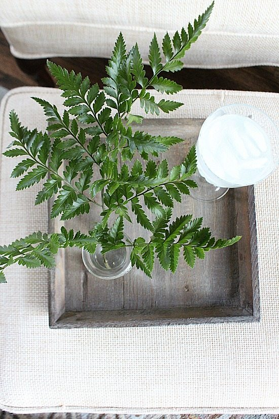Ferns in old bottles Refresh Restyle spring home tour