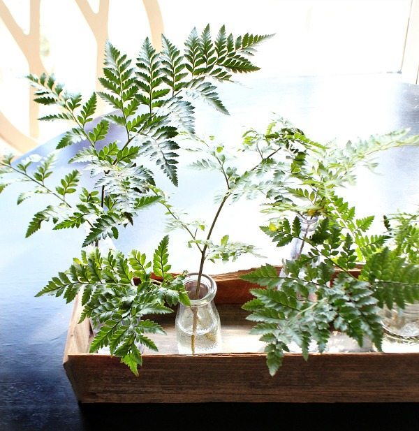 How make a barn wood planter - use it on the table filled with old bottles and flowers or ferns