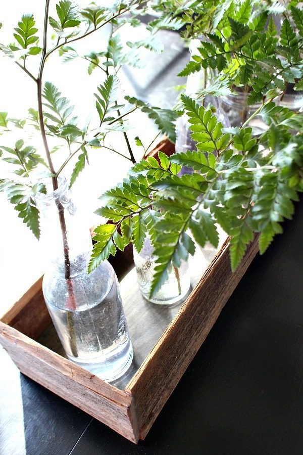 Old barn wood - used to create a planter box for the table - centerpiece filled with old bottles and ferns