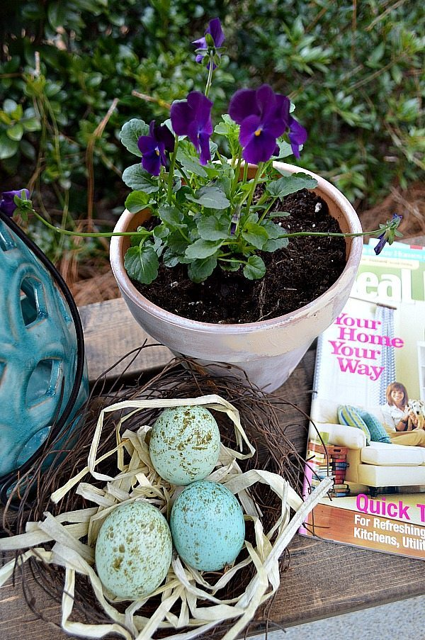 Purple pansies in aged clay pots, you can age new pots and create a worn look.