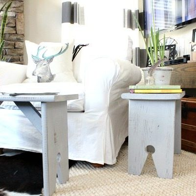 Spray Paint with Wagner Home Decor Sprayer