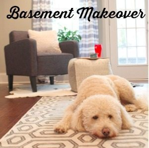 Check out our Basement Makeover!