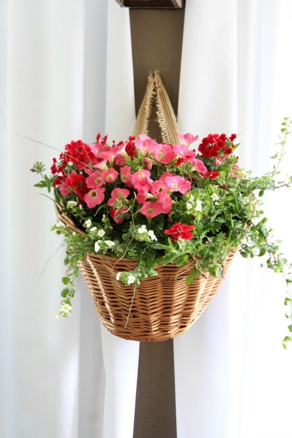 How to use a Bicycle basket as planter - a thrift store makeover for outdoor decor at refreshrestyle.com