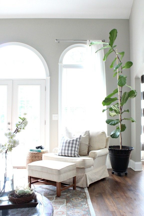 Light and bright space perfect for the fiddle leaf fig tree summer decor at Refresh Restyle