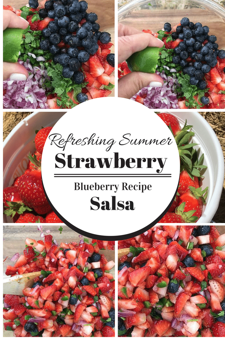 Strawberry Blueberry Refreshing Summer Salsa