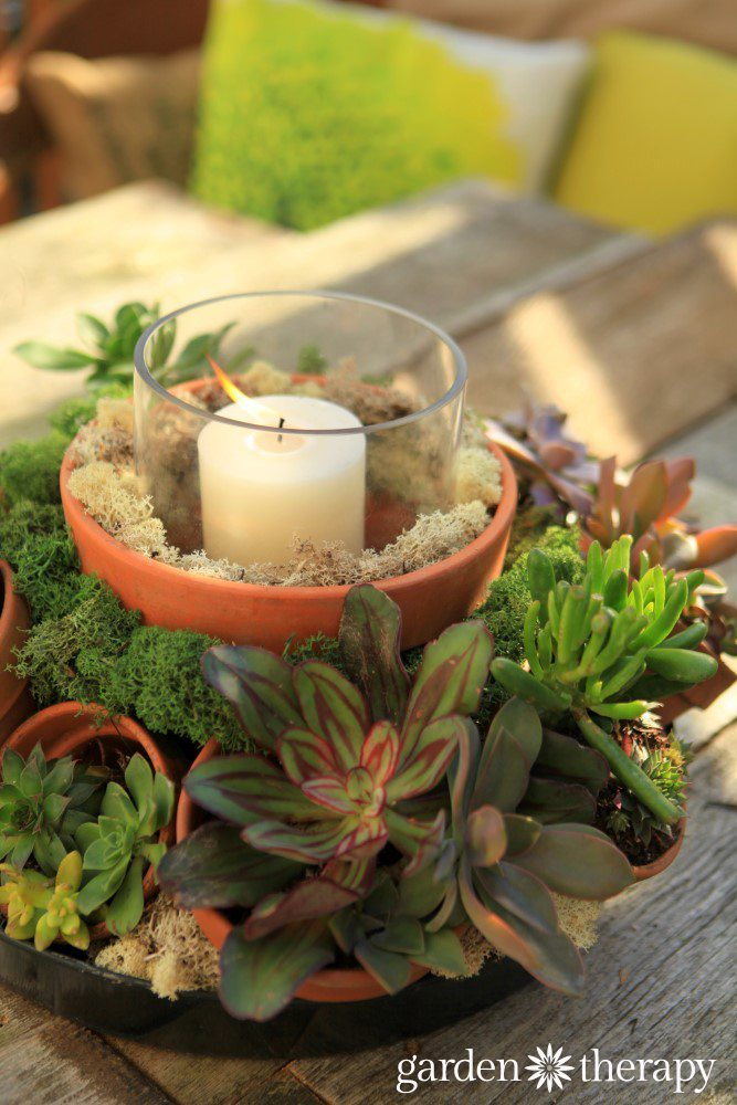 Make-this-gorgeous-outdoor-centerpiece-with-terracotta-pots-succulents-and-a-candle