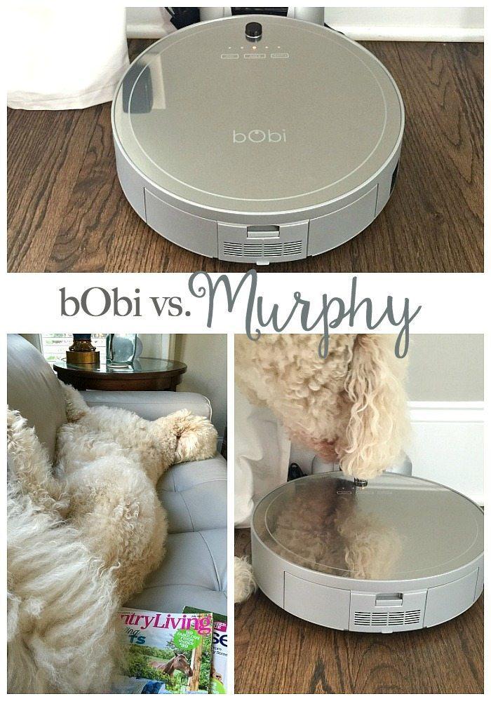 Robot vacuum - bObi Pet by bObsweep review