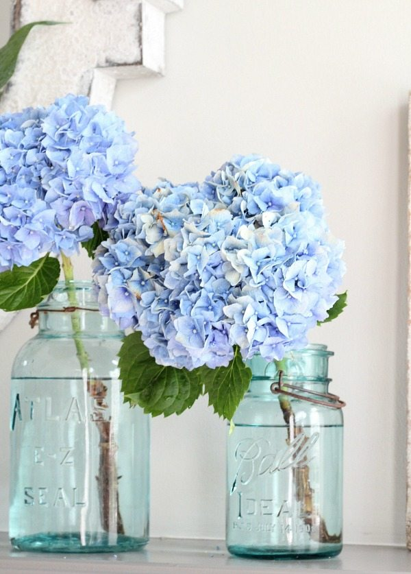 You can find Mason Jars at just about any antique store and they are so affordable - you'll want to grab every one that you see
