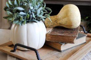 Pumpkin no carve idea