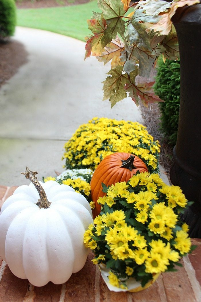 mix-of-pumpkins-and-mums-for-the-fall-front-door