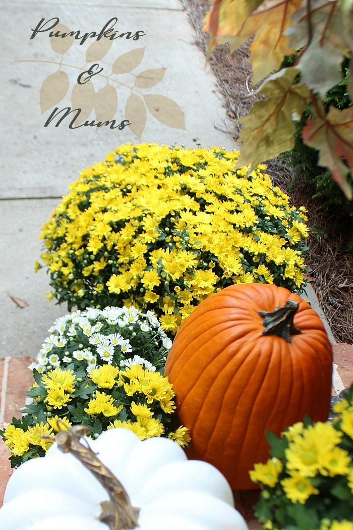 pumpkins-and-mums-are-perfect-for-fall-front-porch-decorating