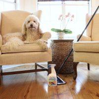 Keeping the pine wood floors clean