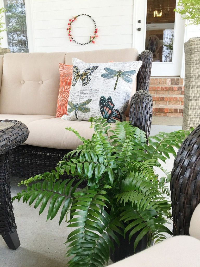 Ferns are perfect for the farmhouse porch