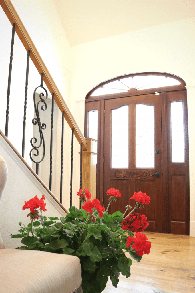 Red geraniums for spring at Refresh Restyle