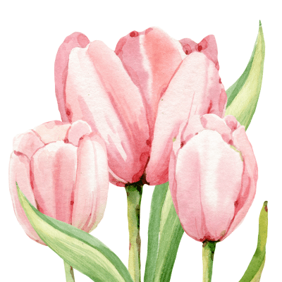 Spring Print Tulips