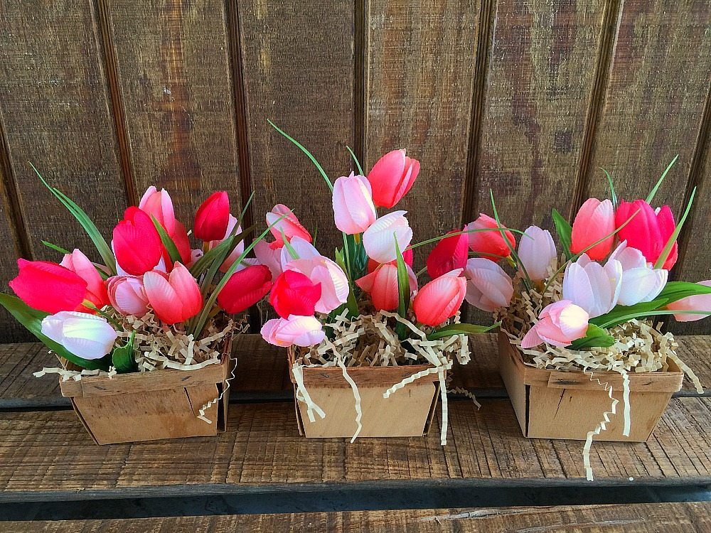 Three berry baskets filled with spring tulips