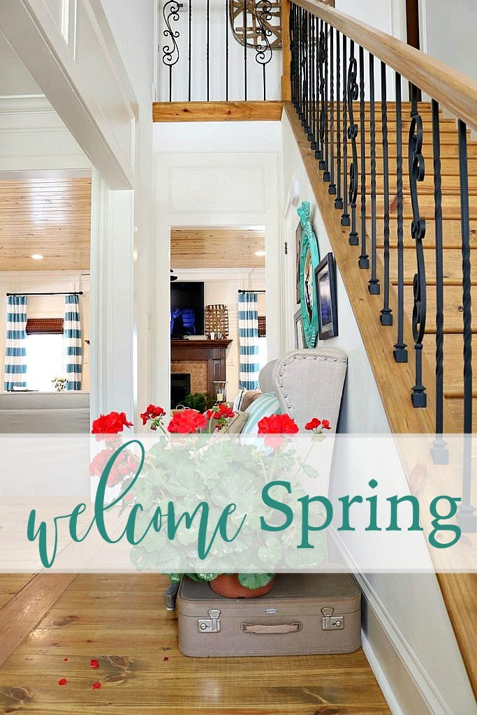 Welcome-spring-with-potted-geraniums-at-Refresh-Restyle-
