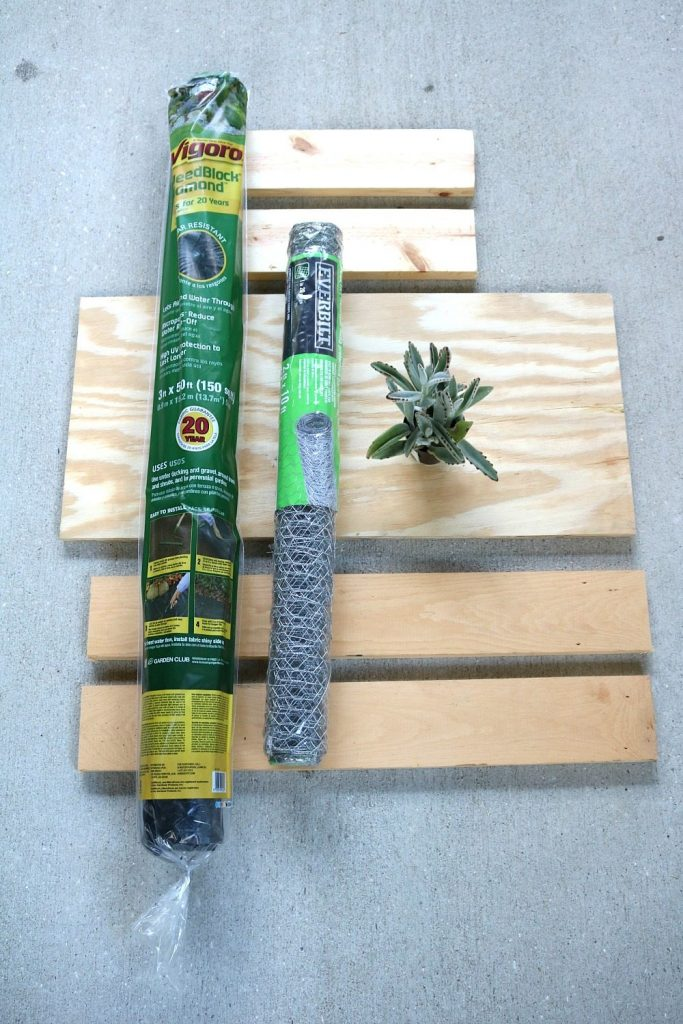 All the ingredients for building a hanging succulent garden