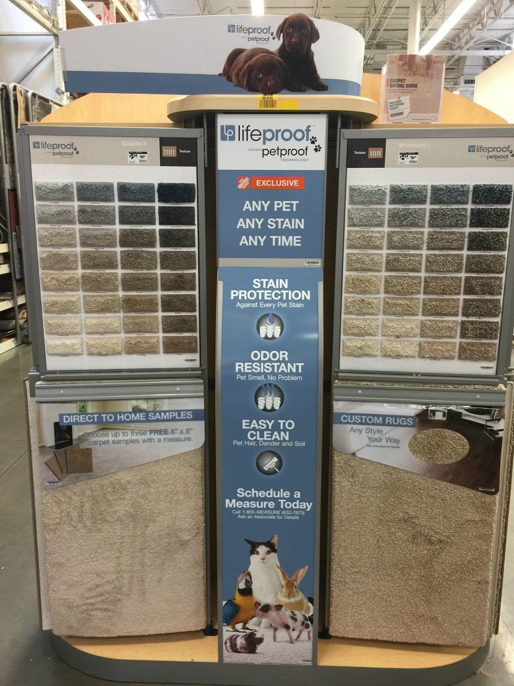 Favorite LifeProof Pet Proof Carpet