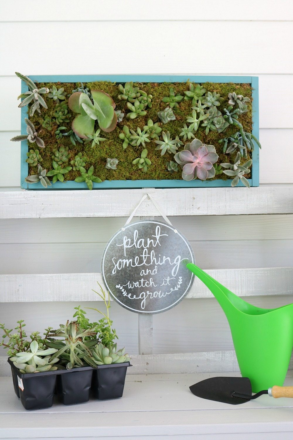 Make this DIY vertical succulent garden